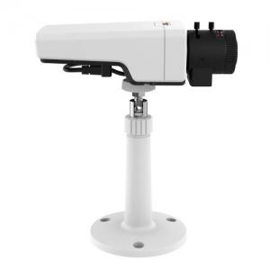 IP-камеры стандартного дизайна